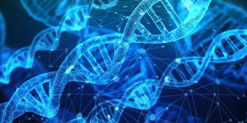 Nueva terapia genética para un tipo de sordera